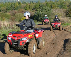 Team Quad Biking Activity